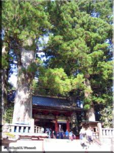 Nikko_Toshogu01RC