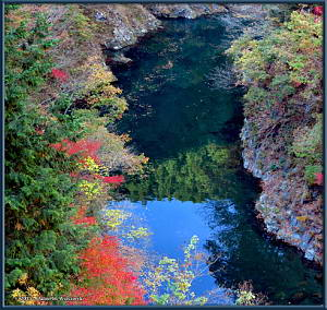 Stunning Tama River Autumn Color Reflection, November 16