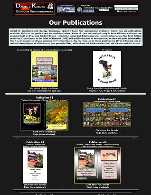 A Page showing All of Our Publications