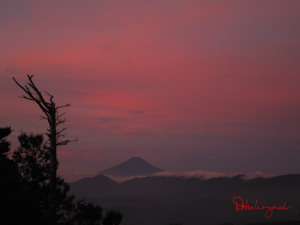Beautiful Sunrise Picture at Mt. Kumotori, September 11 (427 KB JPG File)