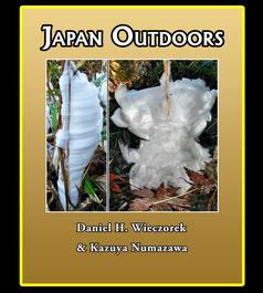 Japan Outdoors
