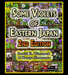 Some Violets of Eastern Japan - 2nd Edition