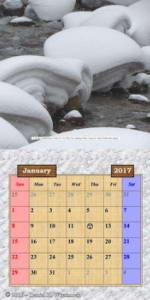 2017Calendar_January_InternationalRC